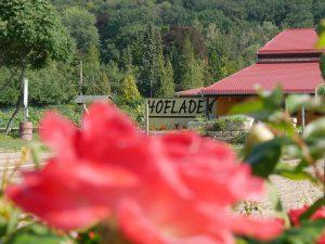 Hofladen in Pillnitz